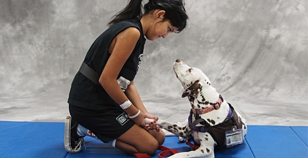 potential-2013-01-hero-therapy-dogs